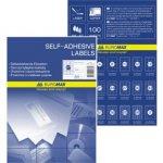 Етикетки клейкі, 1 шт/лист, 210х297 мм, 100 аркушів в упаковці (BM.2810)
