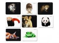 Килимок для миші DEFENDER Sticker гумовий (5780251)